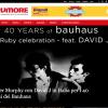 Peter Murphy e David J in Italia per i 40 dei Bauhaus